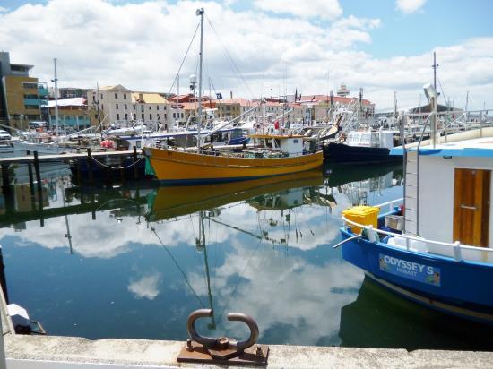 Sullivans Cove : Yachts
