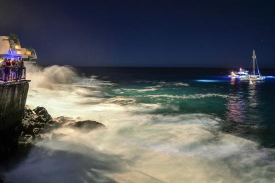 Manta Rays Big Island Sheraton