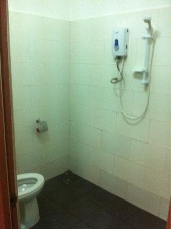 Velkommen Backpackers: All in one bathroom