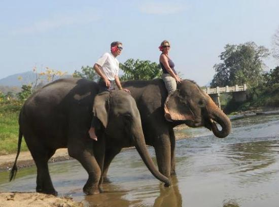 Next Step Thailand (Travel with Joe) Cycling and Hiking Private Day Tours : We had a great time riding Elephants and then playing with them in the river.