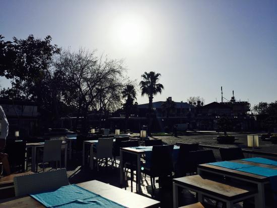 Aphrodite Restaurant: View