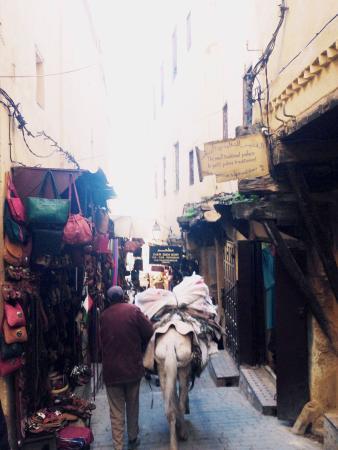 Ryad Salama Fes : La Medina