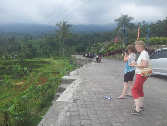 Made Dewata Bali Tour - Day Tours