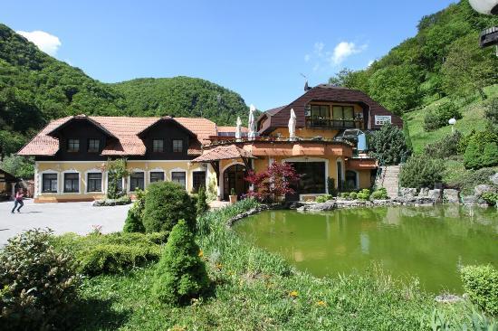 Villa Zelenjak