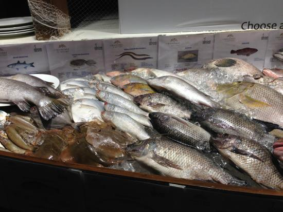 Above Sea level: Fresh Fish