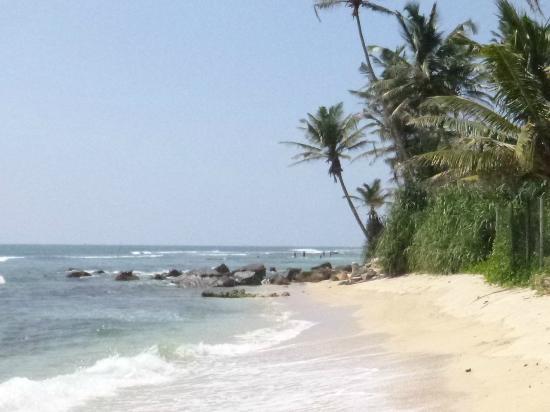 Chariot Guest House: overlooking the great Mediha surf spot
