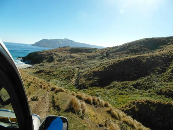 Sam's Peninsula Off Road Tours.: View from within the vehicle