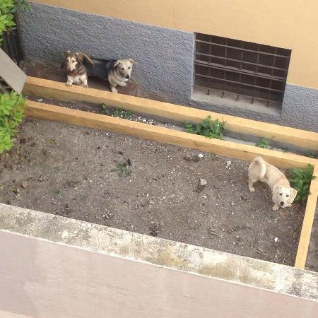 Pension Milema: соседи