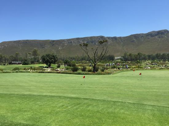 Hermanus, Afrique du Sud : Sunny, windy day