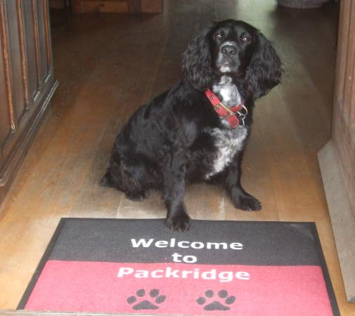Packridge Bed and Breakfast: Just as the picture says Welcome to Packridge
