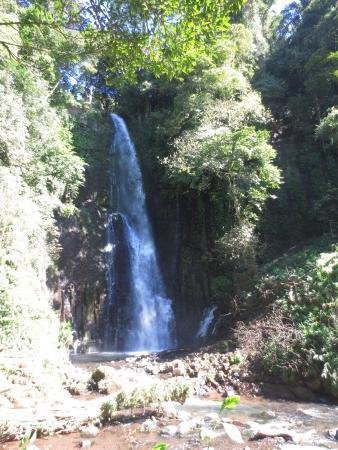 Grecia, Kosta Rika: Los Chorros Waterfalls