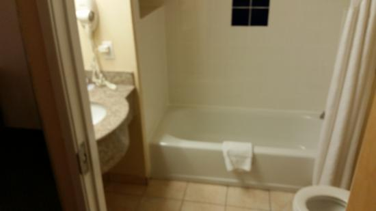 Holiday Inn Express & Suites Arlington: Bathroom