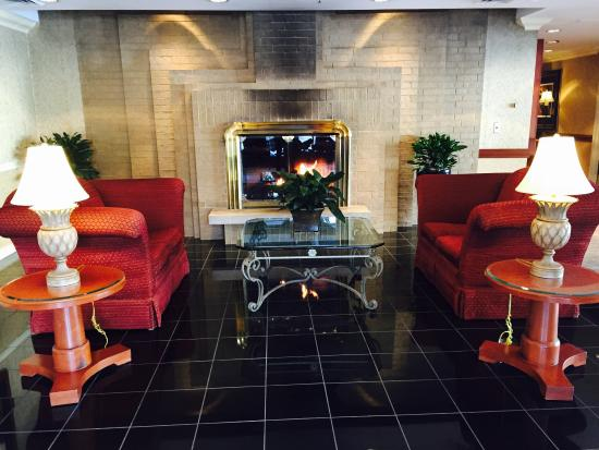 Hilton Northbrook: One of many beautiful lounge areas