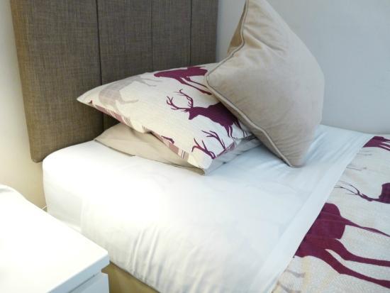 Pitcullen Guest House: en-suite twin room