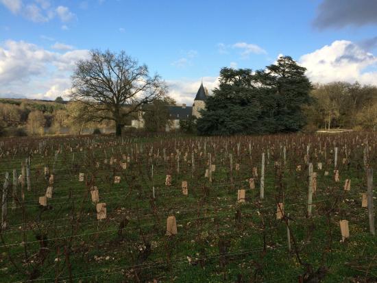 Vinitour Centre-Loire : Vineyard and Chateau