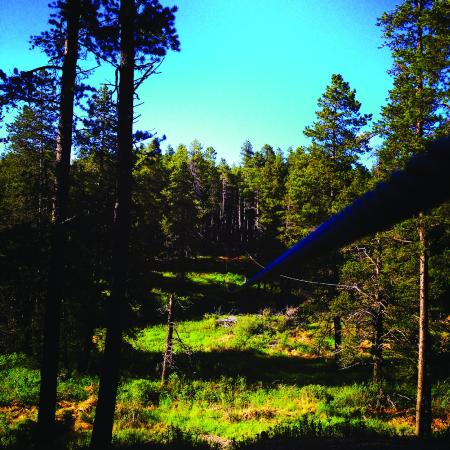 Cypress Hills Eco-Adventures