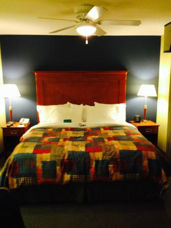 Homewood Suites by Hilton Newburgh-Stewart Airport: Room