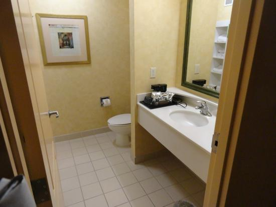 Hampton Inn Richfield: Bathroom with step in shower