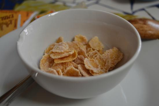 Hostal Aldea Del Elqui: desayuno cereales
