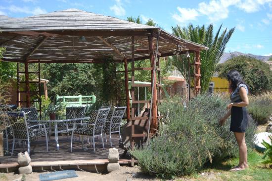 Hostal Aldea Del Elqui: quincho