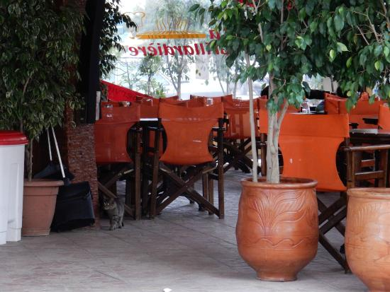 La Grillardiere : Outdoor seating