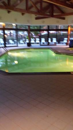 Atlanta Marriott Peachtree Corners : Indoor pool at Peachtree Corners Marriott