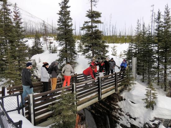"""Banff Adventures: Looking down - beware the 42"""" safety rails are only 24"""" with 18"""" of snow"""