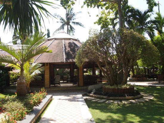 Cebu Marine Beach Resort: 南国気分の味わえる敷地