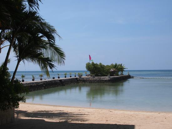 Cebu Marine Beach Resort: 海とビーチ