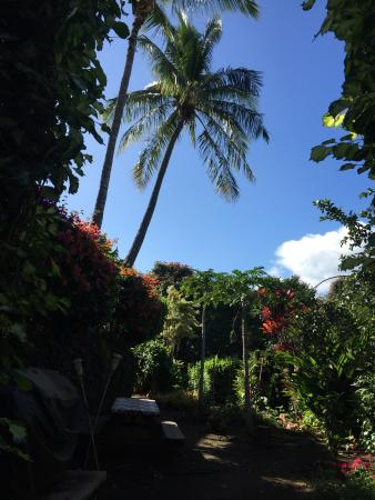 Hale Huanani Bed and Breakfast : Heaven