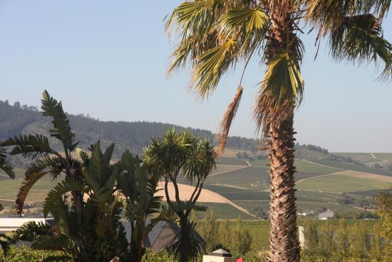 Allegria Guesthouse: one of the many views from the grounds