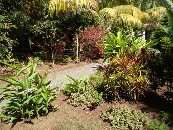 Allee photo de jardin des 5 sens les rodrigues for Jardin 44 des 5 sens
