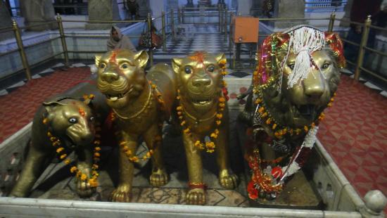 Image result for Bajreshwari Devi Temple, Kangra