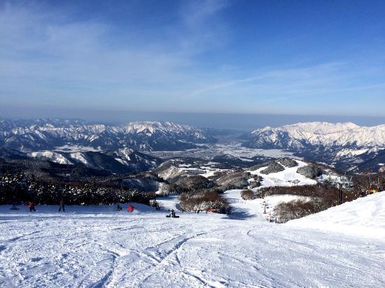 Ski Jam Katsuyama: 景色1