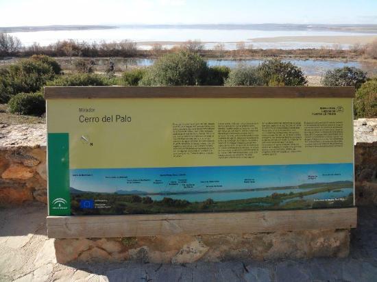 Sandb nke innerhalb der lagune picture of laguna de - Fuentes de piedra ...