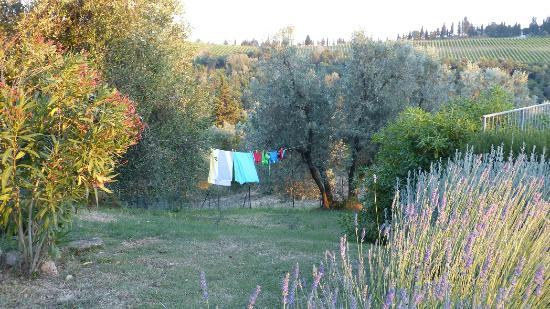 Montespertoli, Italia: Tuin.