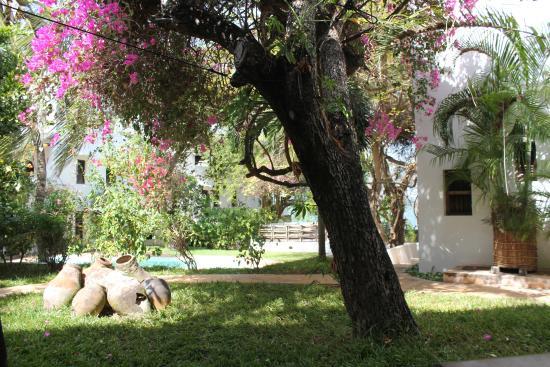 Kijani Hotel: Inside the Kijani