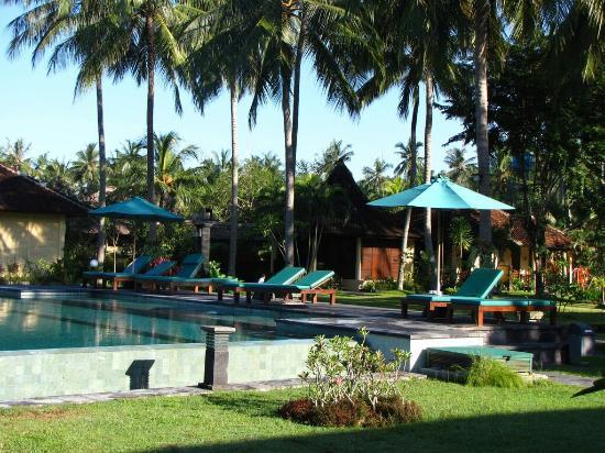 Mascot Beach Resort: The garden and swimingpool