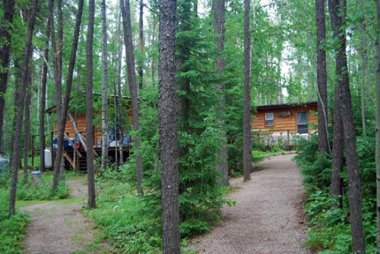 Cobham River Lodge & Outposts: Cobham River Lodge