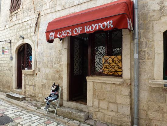 Cats of Kotor Souvenirs and Handicraft