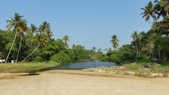 Pozhiyoram Beach Resort: A look at the backwaters from the beach