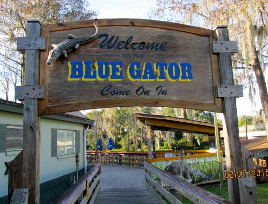 Randy Smith - funny relaxed fun - Picture of Blue Gator ...