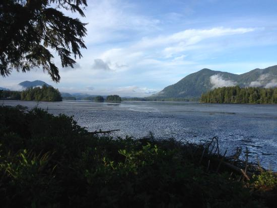 Black Bear Guesthouse: View from our room