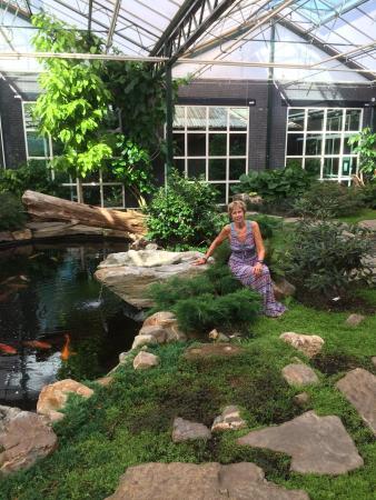 prachtige chinese tuin of is het een japanse foto van