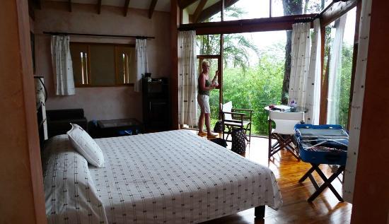 Tenorio Lodge: Die Aussicht