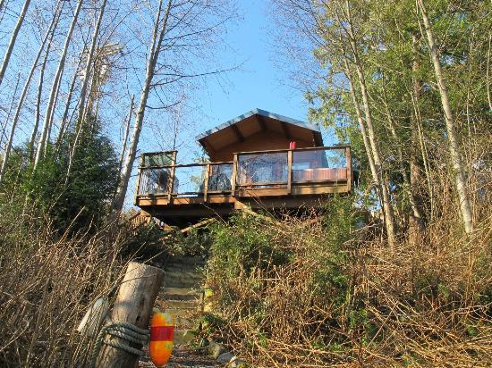 Anchors Inn: Cabin 1