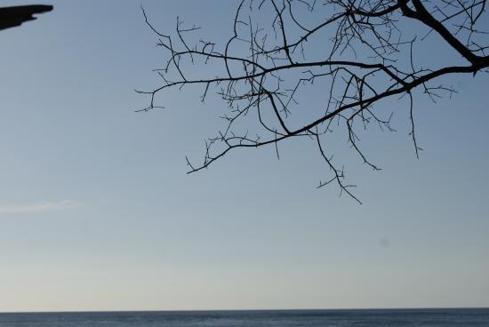 Cabinas La Playa : Camino a la Playa