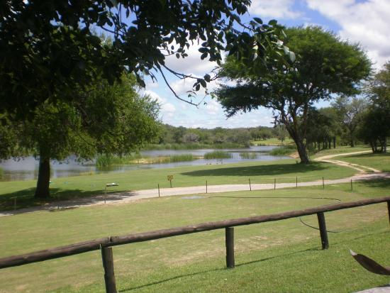Skukuza Golf Course: Vue sur le poiint d'eau depuis le club house