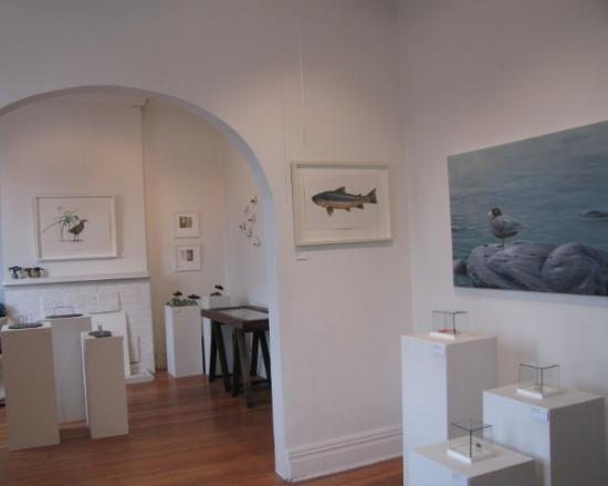 McAtamney Gallery and Design Store