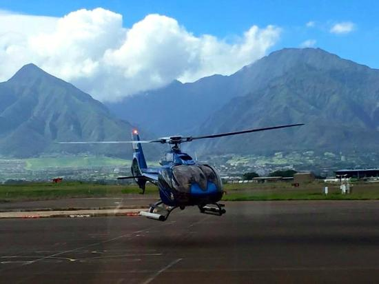 That39s Our Bird  Picture Of Blue Hawaiian Helicopter Tours  Maui Kahul